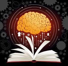Hızlı Okuma Anlama Teknikleri