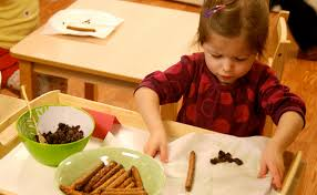 Montessori Okulları Nedir