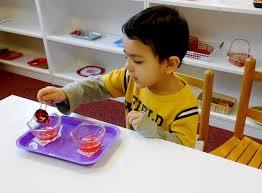 Montessori Okulu Ankara