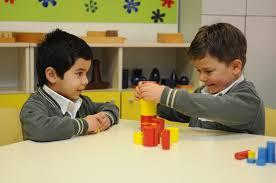 Montessori Sertifikası