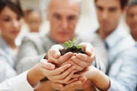 Aile Şirketleri Yönetimi Online Eğitim