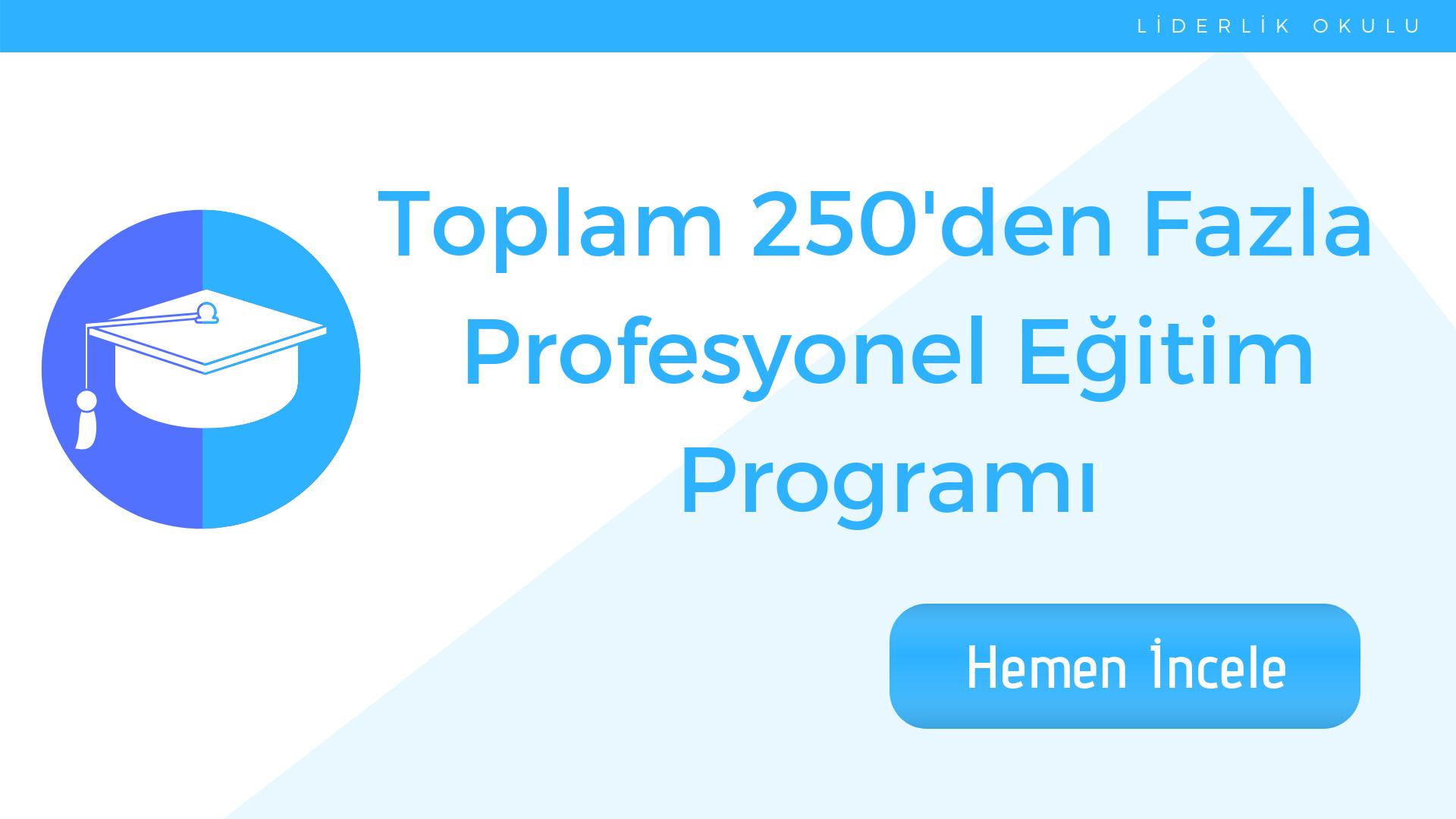 Profesyonel Eğitim Programı